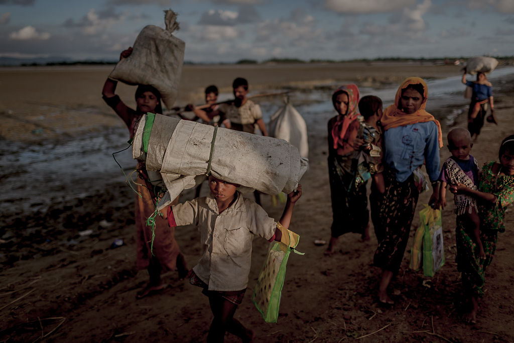 Rohingya survivors proceed to the makeshift camps after crossing the border from Myanmar into Bangladesh.